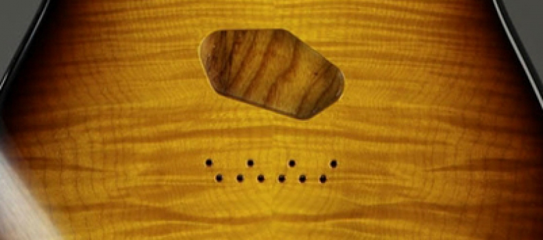 Sugar Maple – The American Heartland Miracle Wood